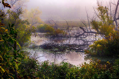 Photograph - Autumn - Natural Wetlands by Gene Sherrill