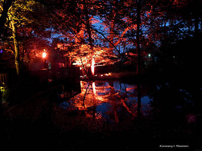 Photograph - Autumn Night by Kimmary MacLean