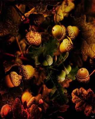 Impressionist Landscapes - Autumn Oak by Chris Lord