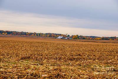 Autumn On An Indiana Farm Art Print by Mary Carol Story
