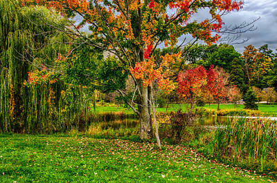 Photograph - Autumn On Arbor Farm by Gene Sherrill