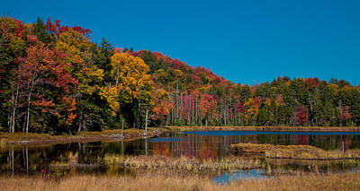Photograph - Autumn On Fly Pond by David Patterson
