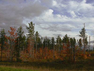 Autumn On Forest Edge Art Print