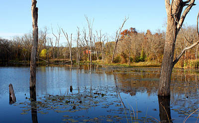 Autumn On Lake Remembrance Art Print