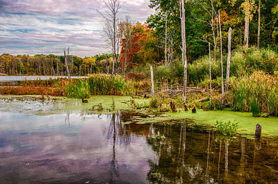 Photograph - Autumn On Norman Lake by Gene Sherrill