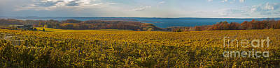 Photograph - Autumn On Old Mission Peninsula Panoramic by Owen Weber