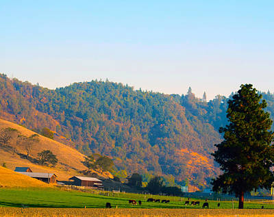 Photograph - Autumn On Oregon Cow Farm by Michele Avanti