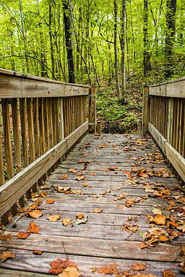 Photograph - Autumn On The Bridge by Parker Cunningham
