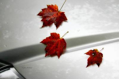 Autumn On The Car Art Print