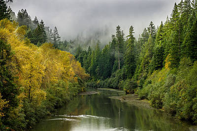 Photograph - Autumn On The Eel by Greg Nyquist