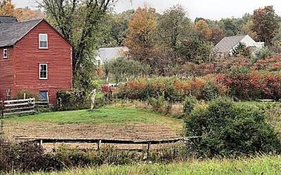 Photograph - Autumn On The Farm by Janice Drew