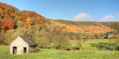 Stellar Interstellar - Autumn on the Hillside by David Birchall