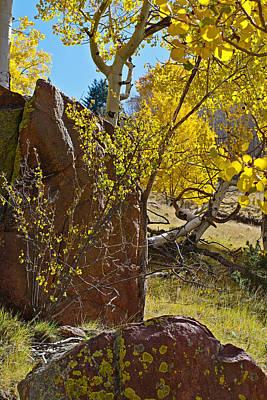 Autumn On The Hillside Art Print by Gary Benson