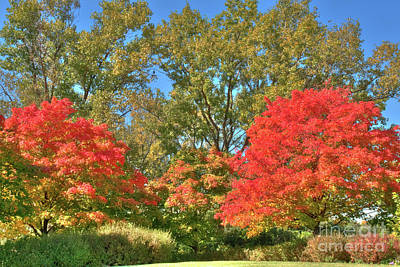 Autumn Photograph - Autumn On The Prairie 2 by Deborah Smolinske