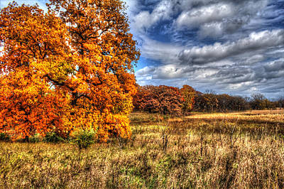 Photograph - Autumn On The Prairie by Roger Passman