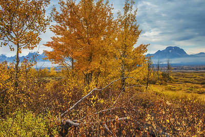 Teton Wall Art - Photograph - Autumn On The Range by Joseph Rossbach