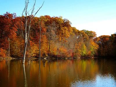 Photograph - Autumn On The Reservoir by Ron Grafe