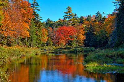 Photograph - Autumn On The Upper Branch Of The Moose by David Patterson