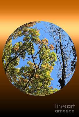Autumn Opens Up Art Print by Rick Rauzi