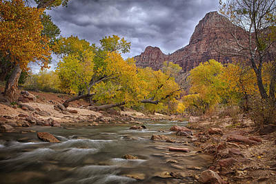 Flowing Photograph - Autumn Over Zion by Andrew Soundarajan