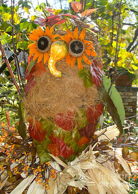 Photograph - Autumn Owl  by Nan Wright