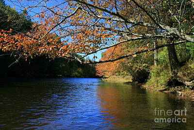 Photograph - Autumn Paddle On The Quinnebaug  by Neal Eslinger