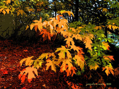 Photograph - Autumn Paints by Jacqueline  DiAnne Wasson