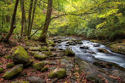 Photograph - Autumn Paradise by Aaron Morgan