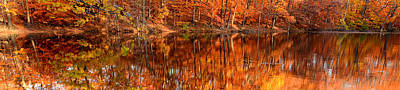 Maple Leaf Art Photograph - Autumn Paradise by Lourry Legarde