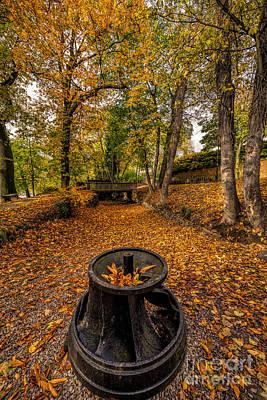 Autumn Park Print by Adrian Evans