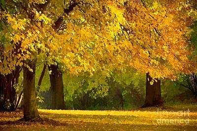 Photograph - Autumn Park Graphical by Lutz Baar