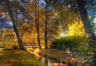 Orange Photograph - Autumn Park by Michal Bednarek