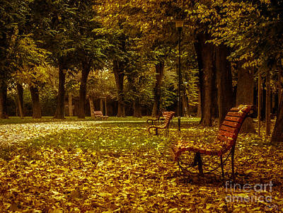 Photograph - Autumn Park by Prints of Italy
