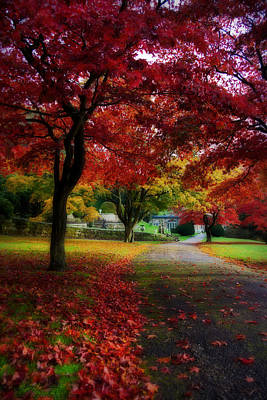 Photograph - Autumn Path by Beverly Cash