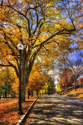 Autumn Scene Photograph - Autumn Path - Boston Public Garden by Joann Vitali