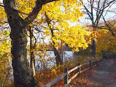 Landscape Photograph - Autumn Path In The Park by Susan Savad