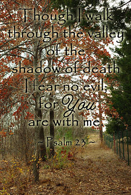 Photograph - Autumn Path Psalm 23 by Robyn Stacey