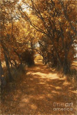Dappled Light Photograph - Autumn Path by Wendy Stevenson