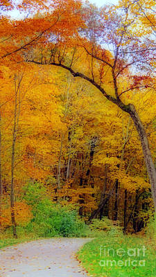Photograph - Autumn Peak Colors by Kay Novy