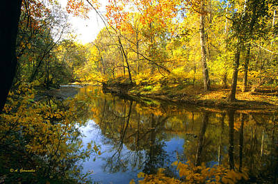 Pennypack Photograph - Autumn Pennypack Creek Montgomery County Pennsylania by A Gurmankin