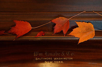 Wilderness Camping - Autumn Piano 3 by Mick Anderson