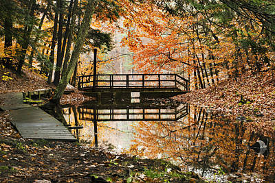 Rollos Photograph - Autumn Pleasure by Christina Rollo