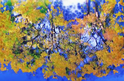 Art Print featuring the photograph Autumn Pond by Diane Miller