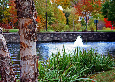 Art Print featuring the photograph Autumn Pond by Andy Lawless