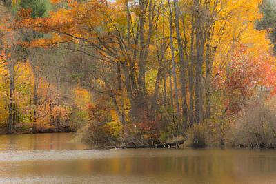Photograph - Autumn Pond by Paul Miller