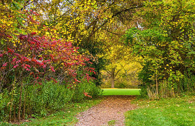 Portal Photograph - Autumn Portal by Steve Harrington