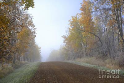 Gravel Road Photograph - Autumn Prairie Roads by Dan Jurak