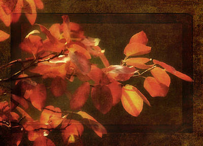 Orange Digital Art - Autumn Promise by Georgiana Romanovna