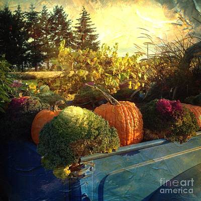 Photograph - Autumn Pumpkins by Charlene Mitchell