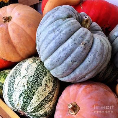 Photograph - Autumn Pumpkins by Diane Macdonald